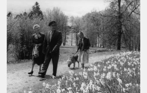 Ansa Ikonen, Eino Kaipainen ja Elina Pohjanpää.