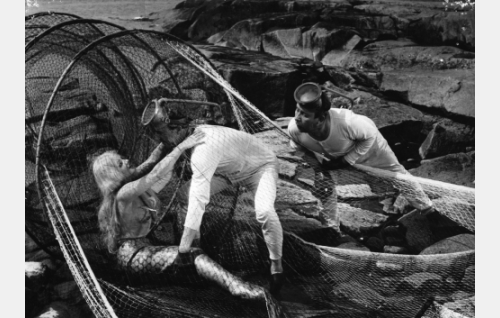 Sammakkomiehet Pekka (Esa Pakarinen, keskellä) ja Pätkä (Masa Niemi) ovat löytäneet luodolta rysään takertuneen merenneito Helmin (Sirkka-Liisa Wilén).