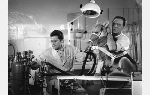 Carl Möhnerin esittämä saksalaistohtori valmistaa susikoira Wolfia avaruusmatkaan. Tohtorin assistenttina on todennäköisesti Horst Jentzen.