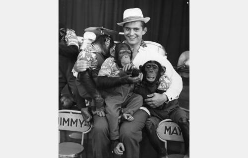 Esko Salminen ja Schumannin simpanssit.