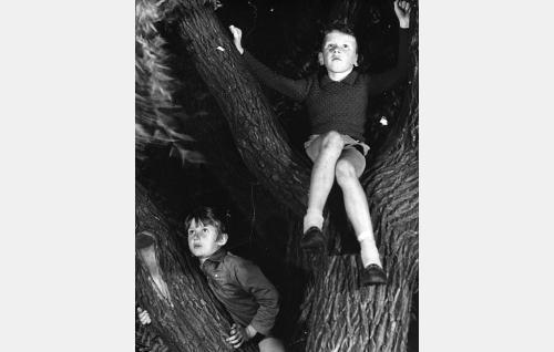 Pojat (Crister Häkkinen ja Juha Ruutsalo) keskustelevat puussa Jumalasta.