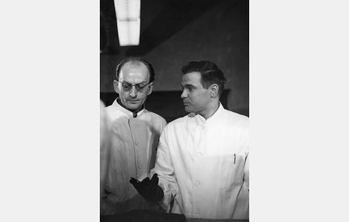 Professori (Leevi Kuuranne) ja tohtori Leino (Rauno Ketonen).