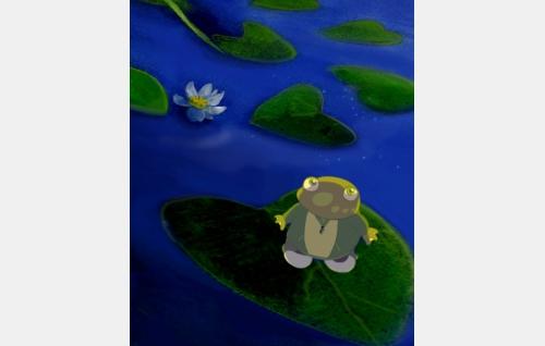 Konna-sammakko. Kuva: Artia.