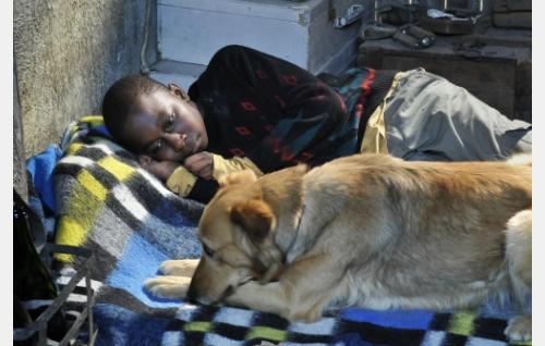 Idrissa (Blondin Miguel) ja Laika-koira. Kuva: Marja-Leena Hukkanen. © Sputnik Oy.