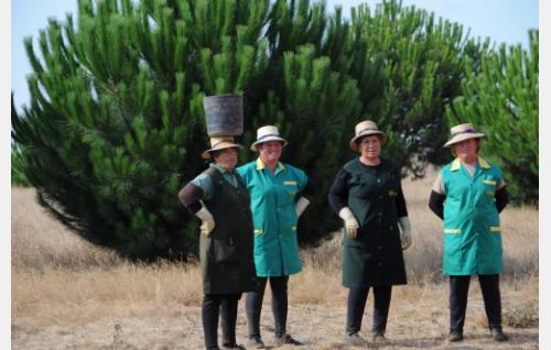 Portugalilaisia tomaatinpoimijoita. Maria Rosa kuvassa toinen vasemmalta. Kuva: Oktober Oy.