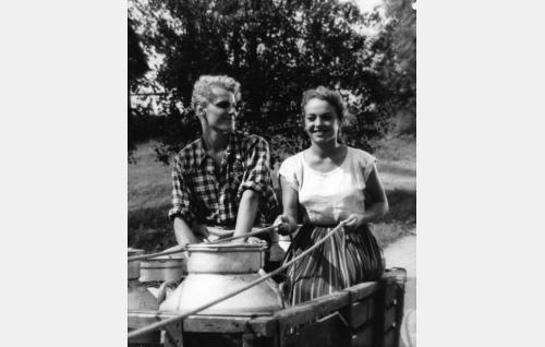 Saulo Haarla ja Anneli Sauli.