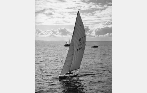 Olympialaisten purjehduskilpailut käytiin Helsingin edustalla Harmajan vesillä. Star-luokassa Ruotsin Lotta IV sijoittui seitsemänneksi.