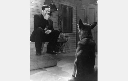 Kello-Kalle (Hannes Veivo) pelkää koiraa.