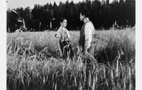 Malviinan (Kirsti Hurme) ja Niskavuoren Juhanin (Tauno Palo) kohtaaminen elovainiolla.