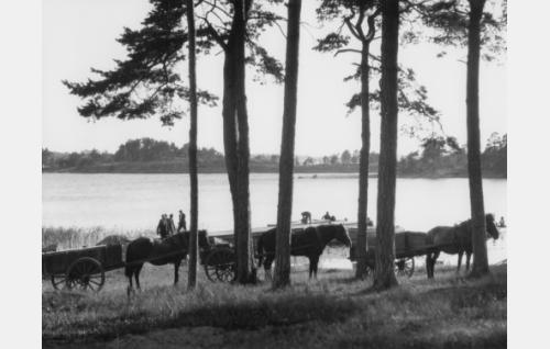 Stansvik, Laajasalo, Helsinki. Takana Pitkäluoto ja Varis. LPH