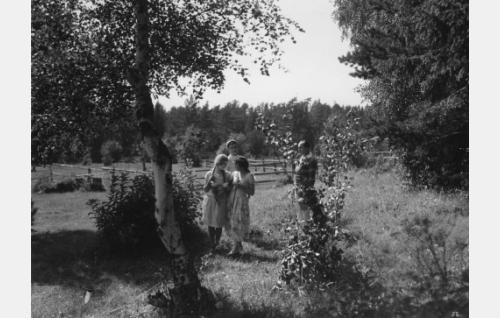 Ellen Sylvin, Lillan Järnefelt ja Paavo Costiander.