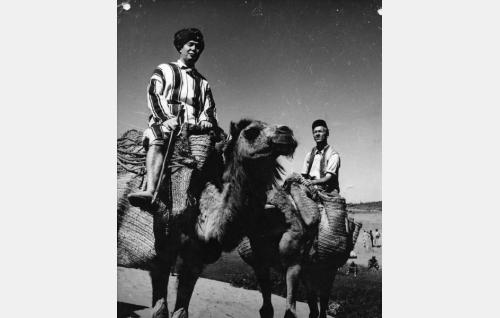 Johtaja Ville Lipponen (Oke Tuuri) ja Esa Pakarinen (Esa Pakarinen) Marokossa.
