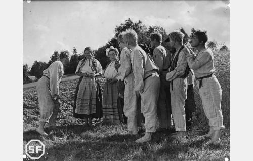 Seitsemän veljestä ja Männistön mökin väki. Vasemmalta Juhani (Edvin Laine), Männistön Venla (Elsa Turakainen), Männistön muori (Ida Salmi), Timo (Joel Rinne), Lauri (Unto Salminen), Tuomas (Eino Kaipainen), Simeoni (Kaarlo Kartio) takanaan Aapo (Kaarlo Kytö) ja Eero (Arvo Kuusla).