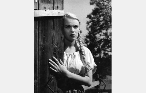 Sinikello (Tuija Halonen).