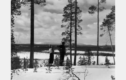 Hanna Taini (Kristine Bergman) ja Olavi Reimas (Ylimetsänhoitaja Suontaa)